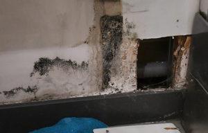 La fuite d'eau se situe derrière le placo et a pourrit toutes les cloisons